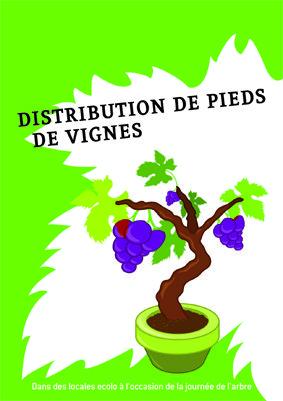 Distribution de pieds de vignes